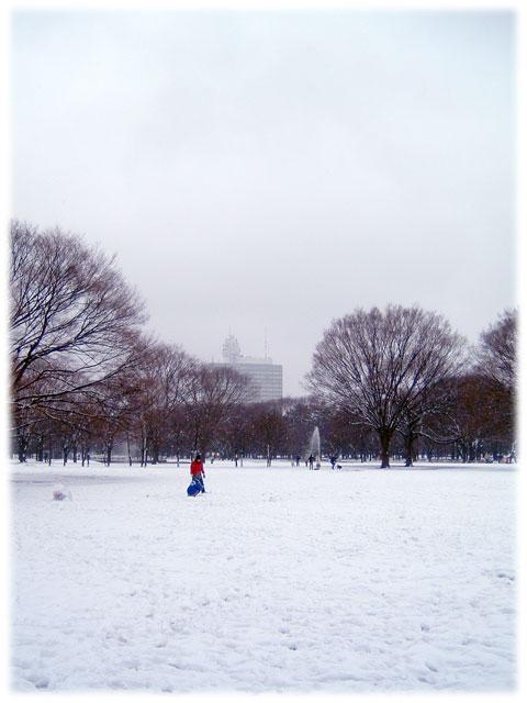 080203_snow_Yoyogipark01.jpg