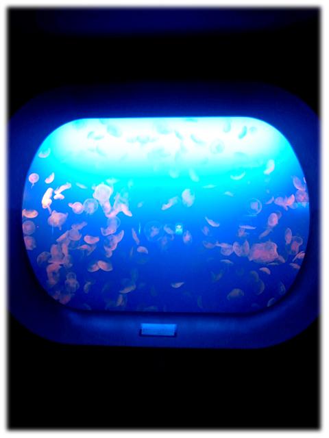 090517_Enoshima-aquarium-05.jpg