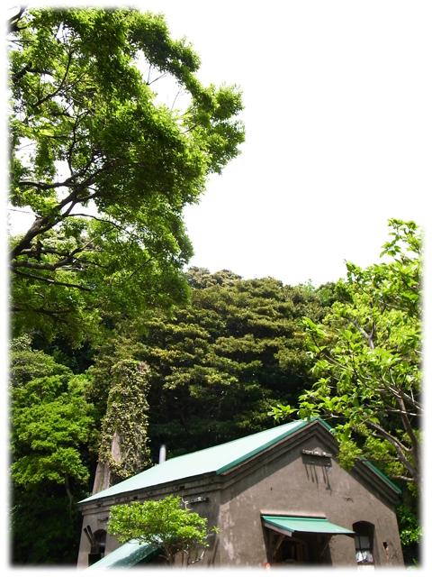 090530_Sarushima-02.jpg