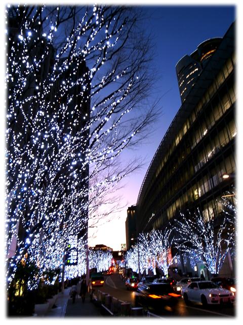 100125_Keyakisaka_sunset.jpg