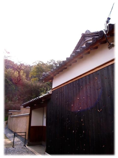 100515_Naoshima_Motomura-03.jpg
