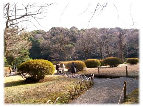 110320_Kiyomasai-03.jpg