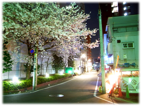 120409_Yozakura-02.jpg