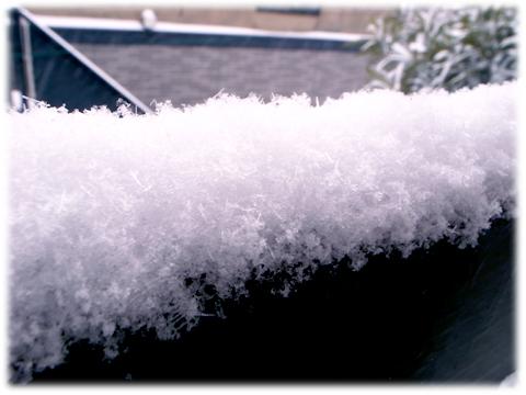140209_Tokyo_snowing.jpg
